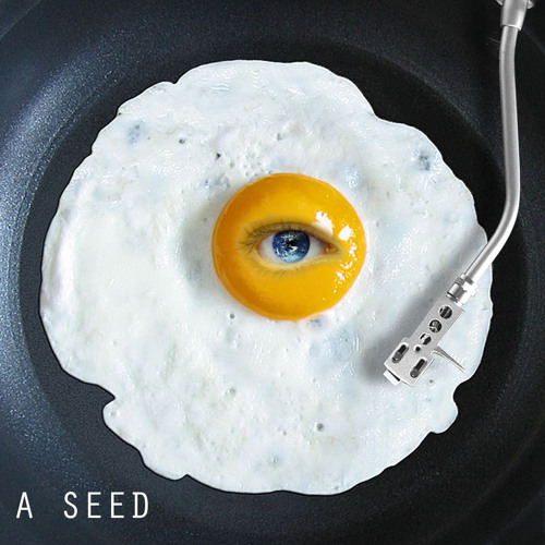 A Seed's avatar