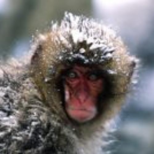 Foraggio Ronzini's avatar