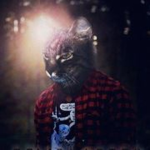 Tomás Lira Menare's avatar