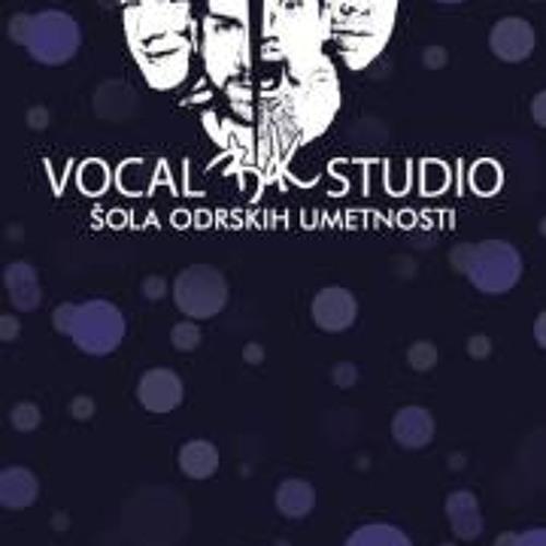 Vocalbkstudio Slovenia's avatar