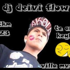 DjDeiviflow