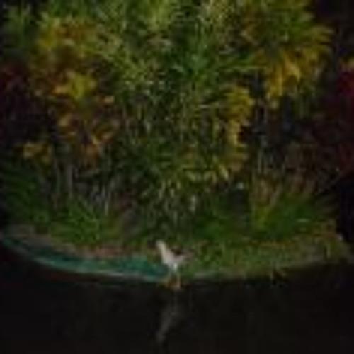 Denis  Deniss's avatar