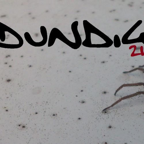 Dundig's avatar