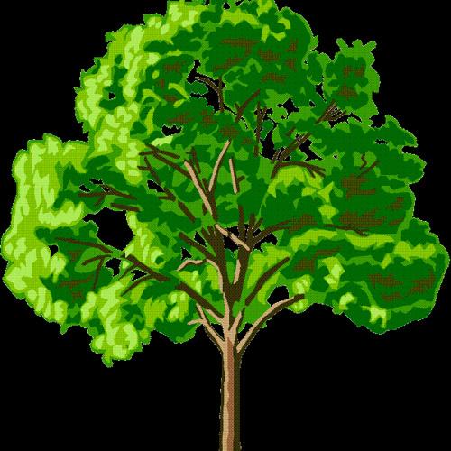 Human Tree's avatar