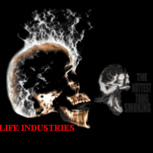 HIGH LIFE INDUSTRIES's avatar