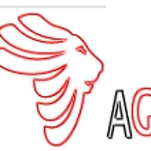 AGAlbum2013's avatar