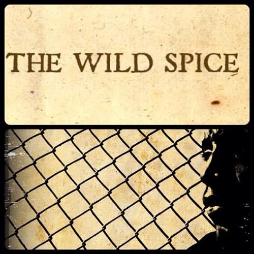 The Wild Spice's avatar