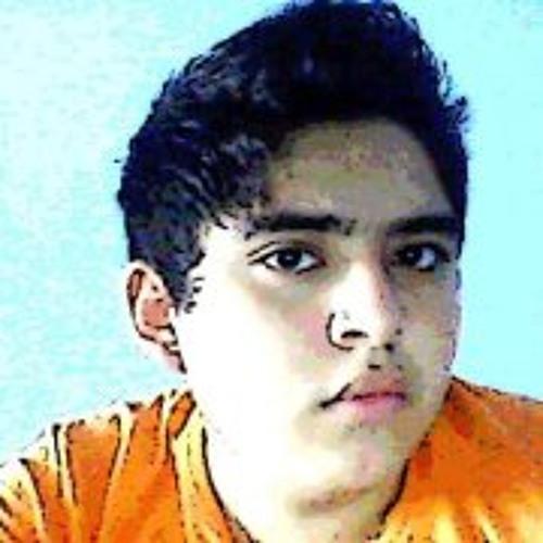 Alejandro Alfaro Torres's avatar