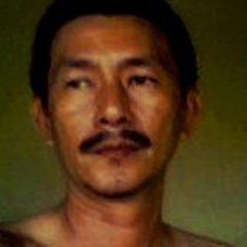 mantanjagokawin's avatar
