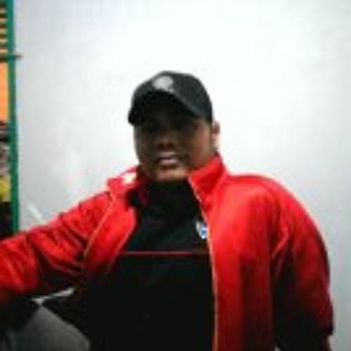 Reza Indra 1's avatar