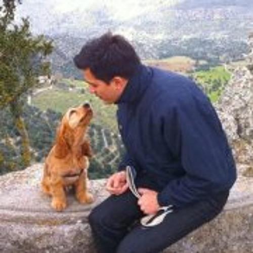 Markos Peñalva's avatar