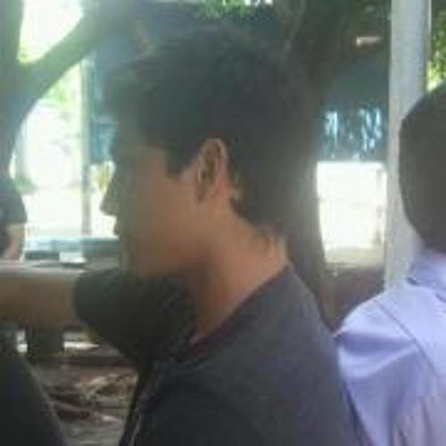 Miguel Alfaro 5's avatar