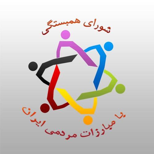 Shoraye hambastegi's avatar
