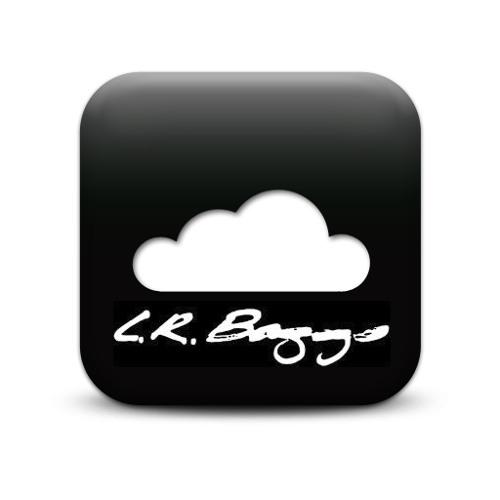 LR Baggs's avatar