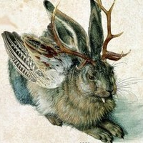 cesarabbit's avatar