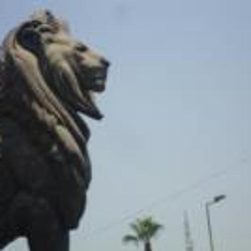 Ahmed Elshorbagy's avatar