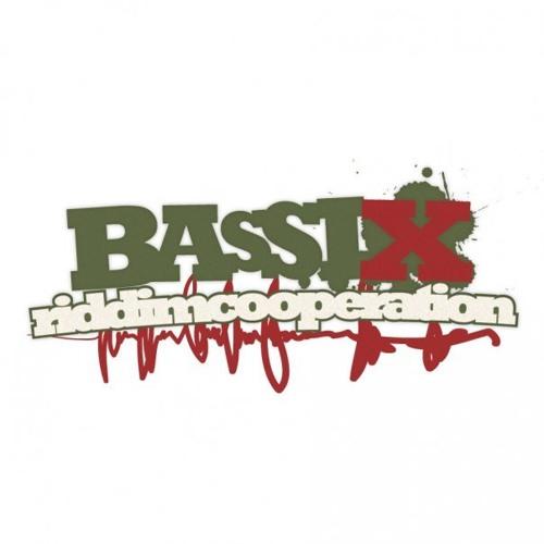 bassixriddimcooperation's avatar