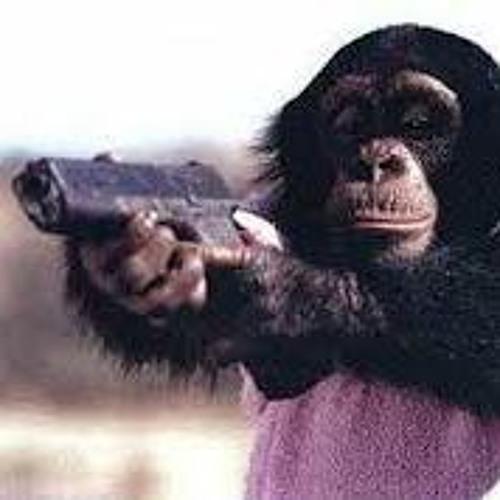 Higher Primate's avatar