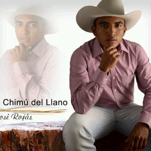 El Chimú Del Llano's avatar