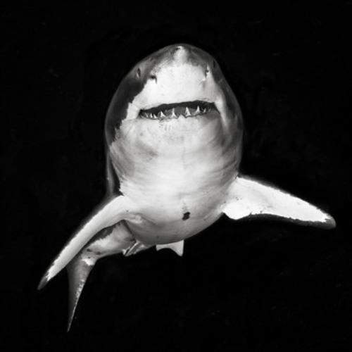 PumpDrivrx's avatar