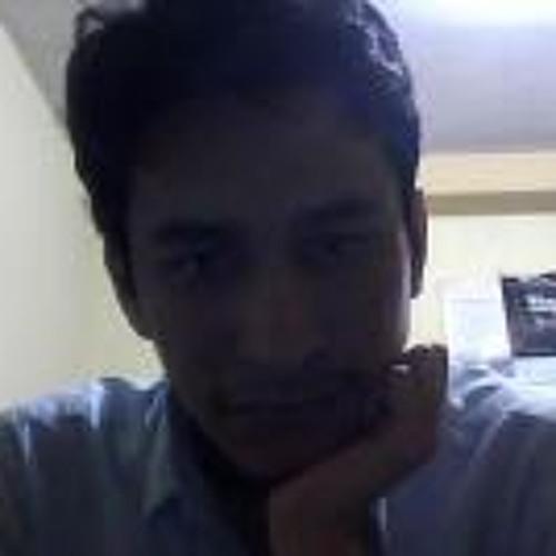 Luis Alvarado 27's avatar