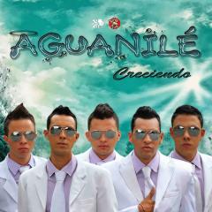 AguanileSalsa