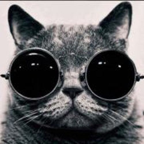 Veronika Pap's avatar