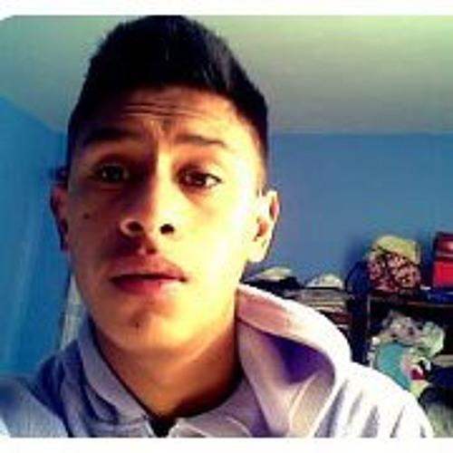 Martin Espinosa Lima's avatar