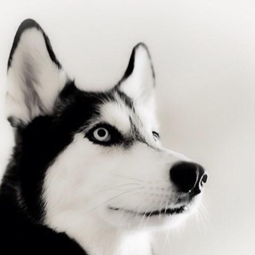 Oliver Lugo's avatar