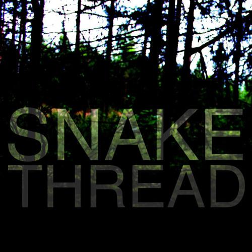 Snakethread's avatar