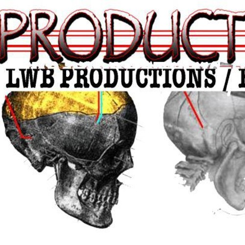 LWBPRODUCTION's avatar