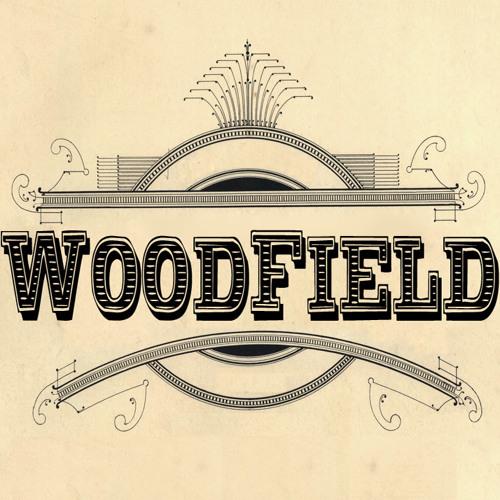 WoodField's avatar