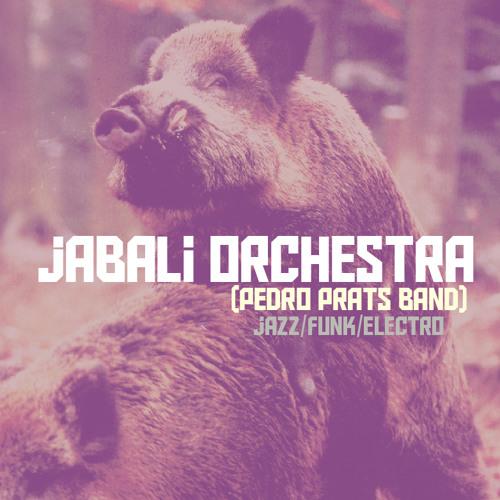 Jabalí Orchestra's avatar