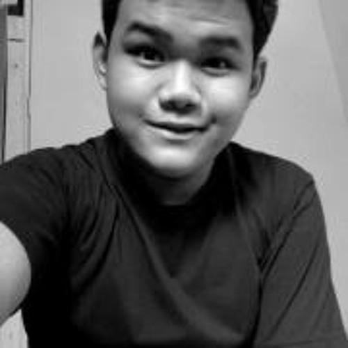 Sherwin Samut's avatar