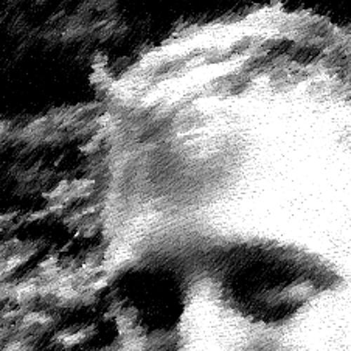 Sam Glass's avatar