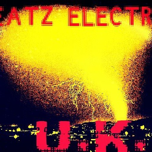 BEATZ ELECTRIC UK's avatar
