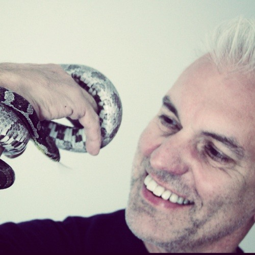 David Ivory's avatar