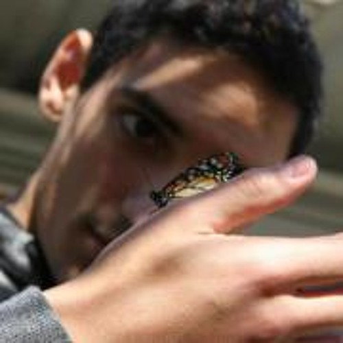Cristian Chiappero's avatar