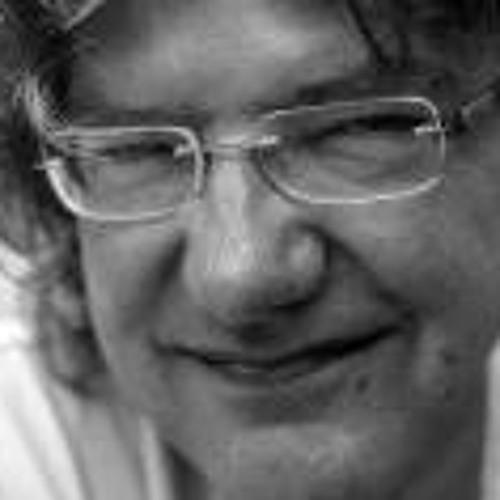 Fred de Vries's avatar
