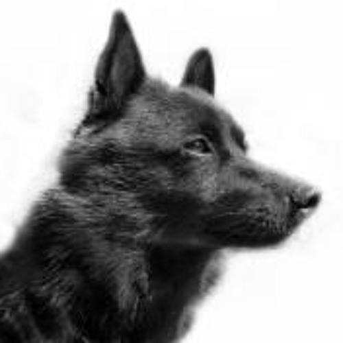 Jan-Erik Svensson's avatar