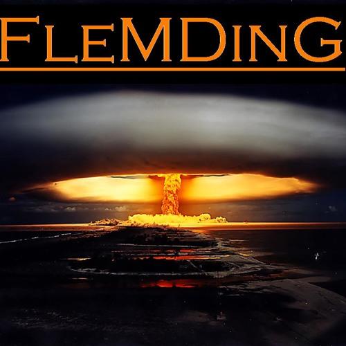FleMDinG's avatar