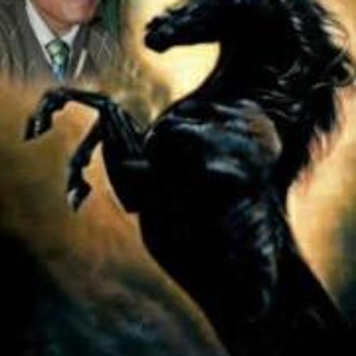 STEVEN PATRICK's avatar