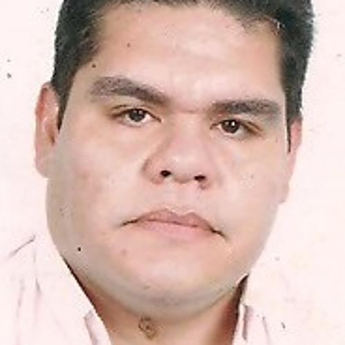 carlosmijarespoyer's avatar