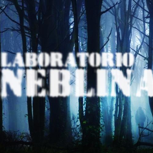 LabNeblina's avatar