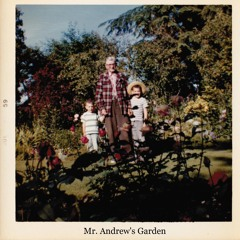 Mr. Andrew's Garden