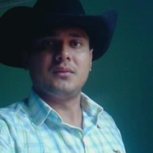user742046253's avatar
