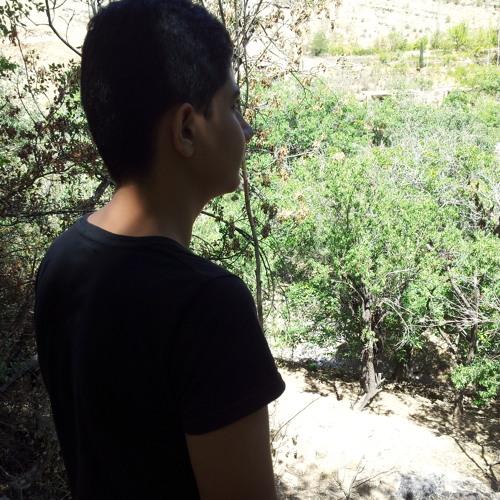 sepehr2f's avatar