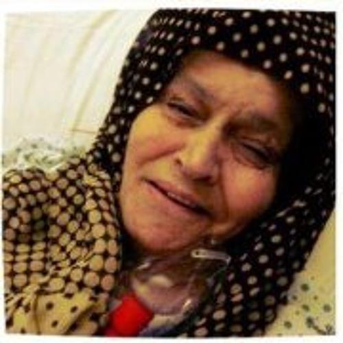 Mohammed Rajab 1's avatar
