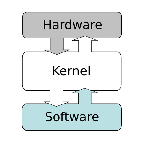 RealKernel's avatar