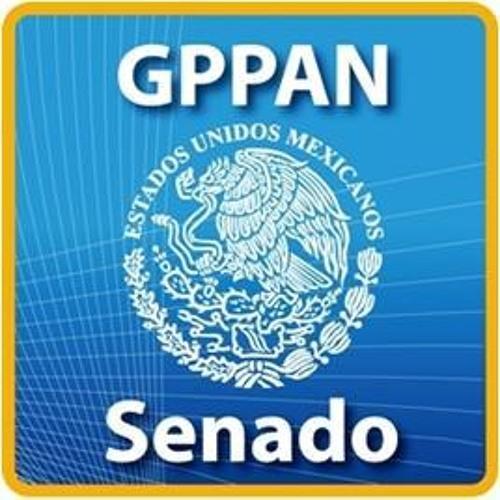 senadoresdelpan's avatar